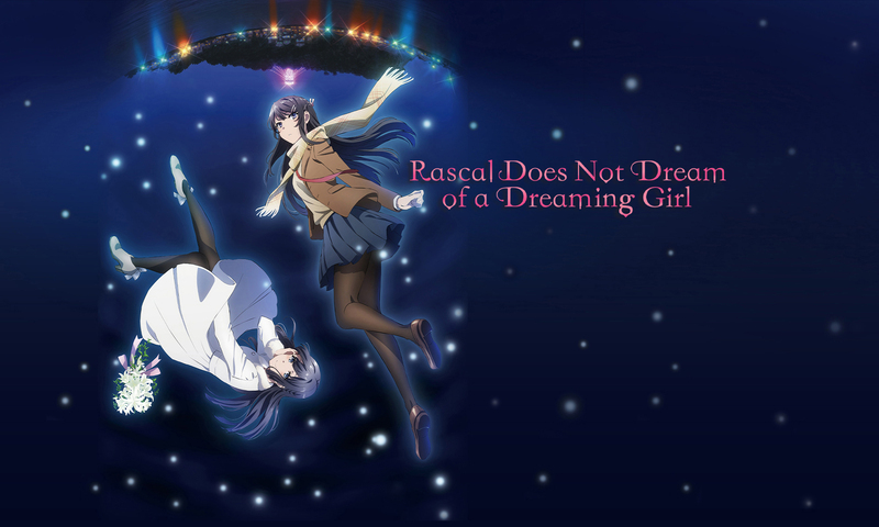 who dies in Rascal Does Not Dream of a Dreaming Girl
